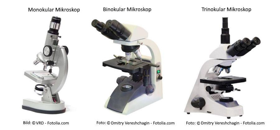 Mikroskop kaufen Bild-zwecks-mono-bi-und-tri-1-compressor