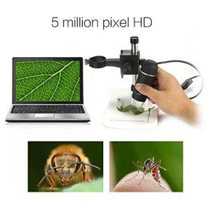 DBPOWER 20-300x Digitales Mikroskop mit HD Kamera, 5MP Videoaufnahme USB Magnifier, Schwarz - 5